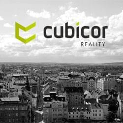 Reality Cubicor